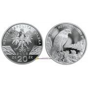 Польша 20 злотых 2008 год Животные мира: сапсан (лат. Falco Peregrinus) серебро пруф